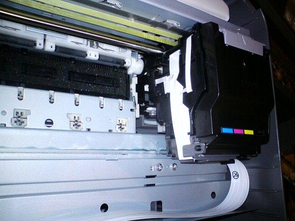 качать бесплатно драйверы на принтер для скана epson