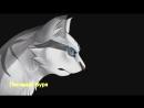 Коты воители флэш 2.mp4