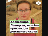 Александра Левицкая, хозяйка приюта для домашнего скота Уголёк ROMB