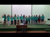 Команда зеленых