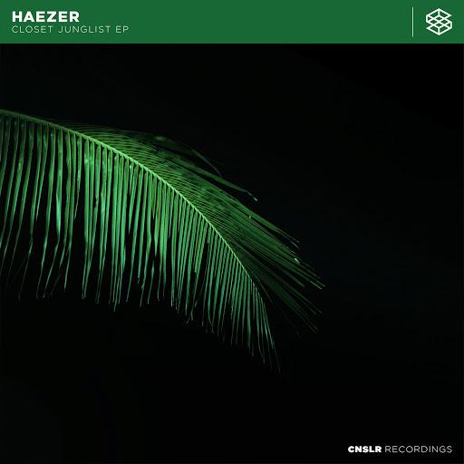 Haezer альбом Closet Junglist