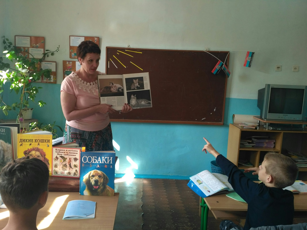 животный мир планеты, детям о природе, донецкая республиканская библиотека для детей, сектор организации досуга детей