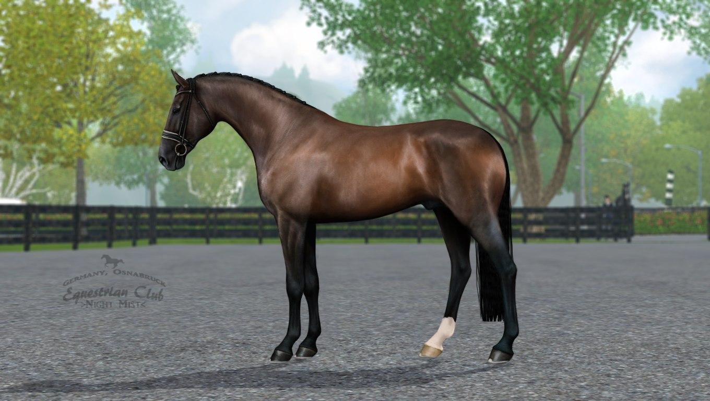 Регистрация лошадей в RHF 2 - Страница 8 D-XIgpzokjM