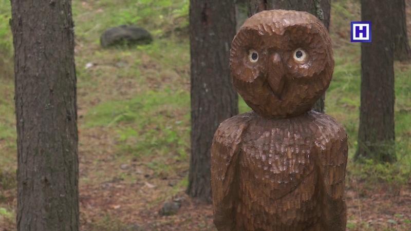 В Зеленоборском появились деревянные скульптуры.