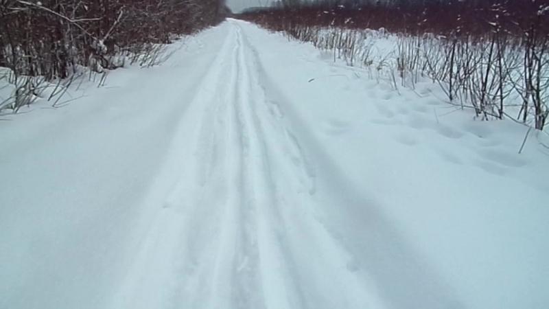 На лыжах ( последний раз ездил в школе )