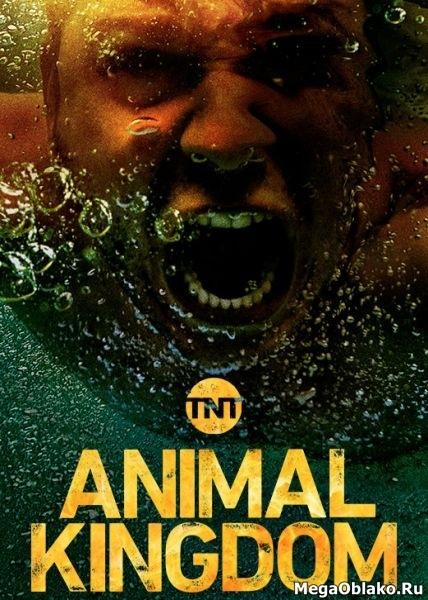 По волчьим законам / Animal Kingdom - Полный 3 сезон [2018, WEB-DLRip | WEB-DL 1080p] (LostFilm)