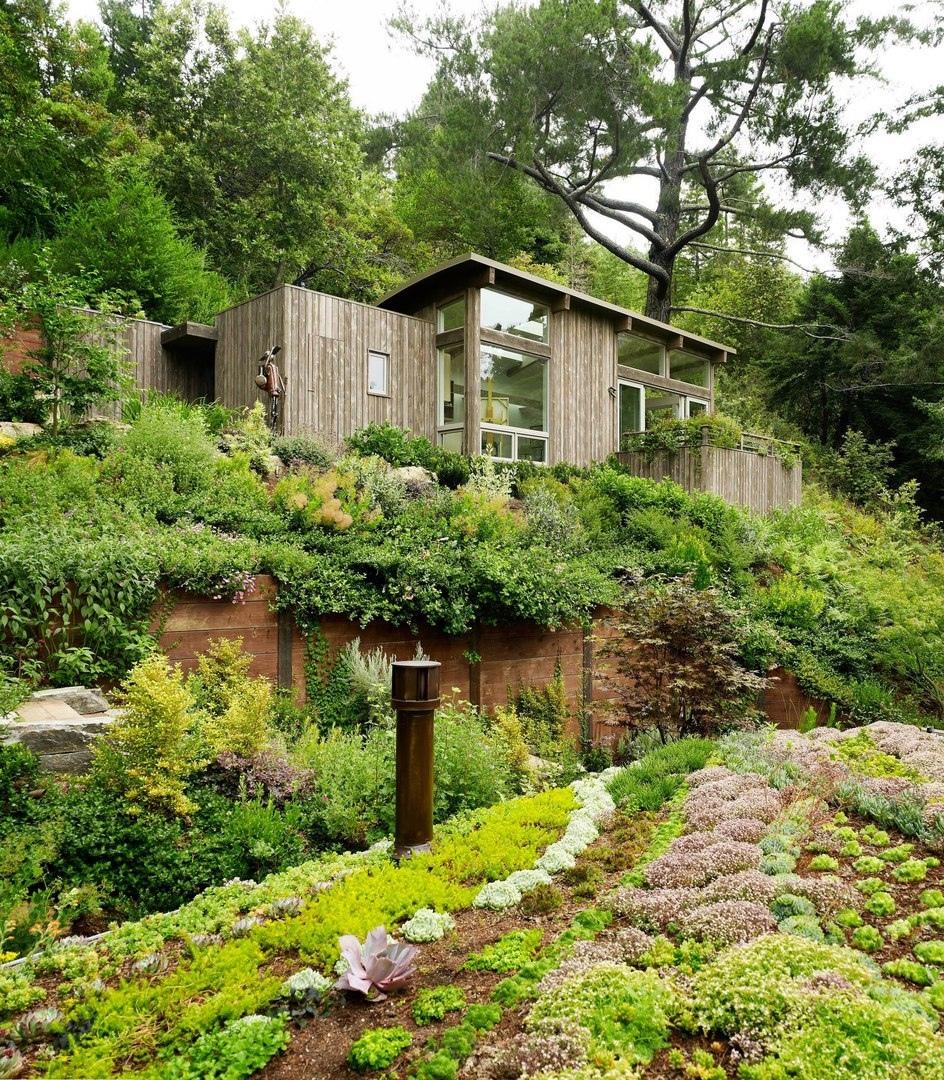 Уединенный дом с с садом на крыше на крутом склоне холма