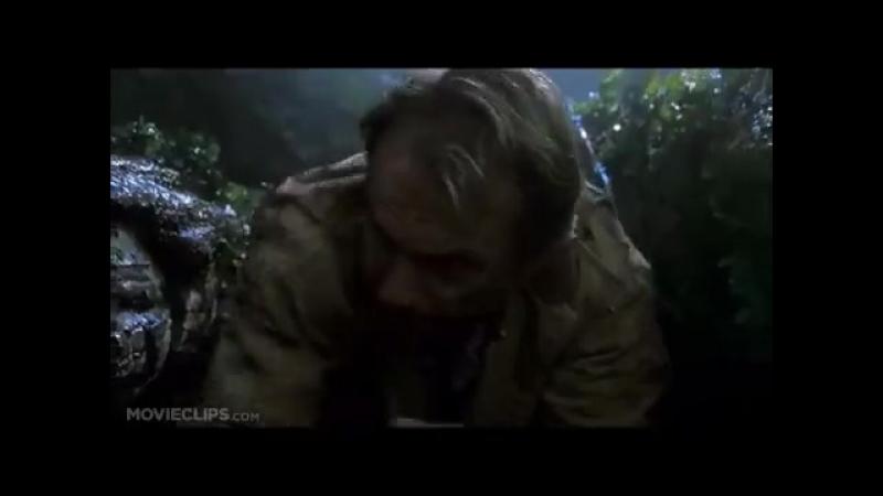 Тирекс убивает спинозавра, T-rex kills Spino
