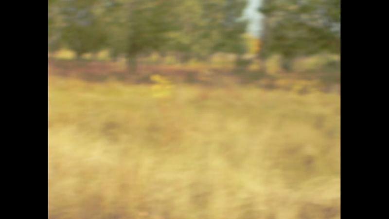 Зарница 2018 Финал городских соревнований.04.10.2018. Герои школы№52
