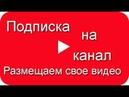Подписка на канал как набрать 1000 подписчиков размещаем свое видео