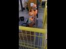 Тренировка перед строительством дачи