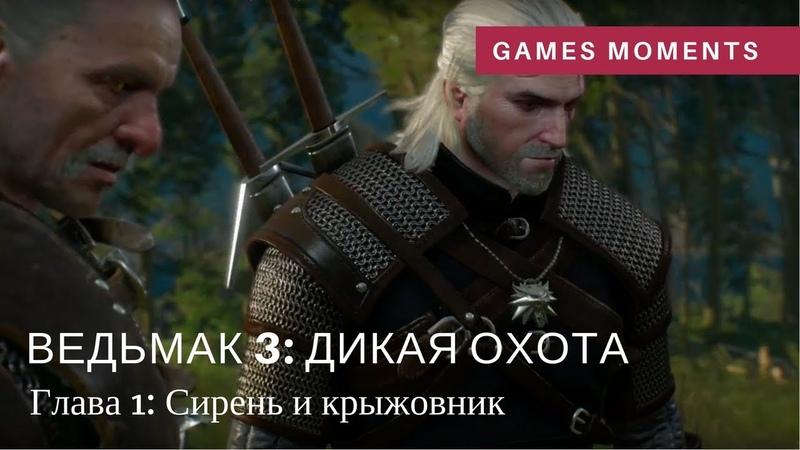 Игрофильм Ведьмак 3 Дикая охота Глава 1 Сирень и крыжовник