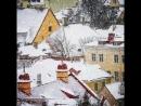 Как прекрасен зимний Таллинн ❤