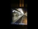 На станции метро «Рязанский проспект» под колеса приближающегося поезда прыгнул пассажир.