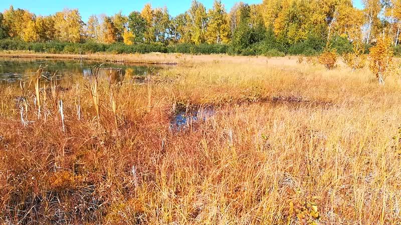 Озеро Калмыккуль на вершине хребта Ирандык. Баймакский район Республики Башкортостан.