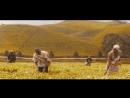 Maher Zain Mustafa Ceceli - O Sensin