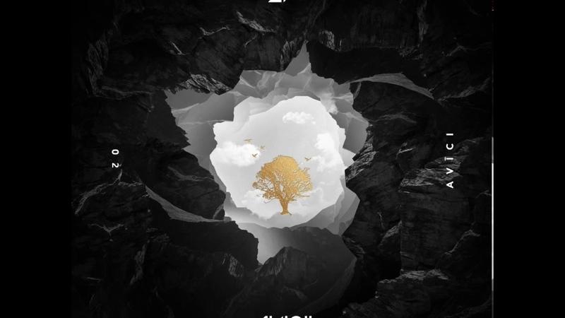 Avicii - How Many Lovers ft. Alex Ebert (Audio)