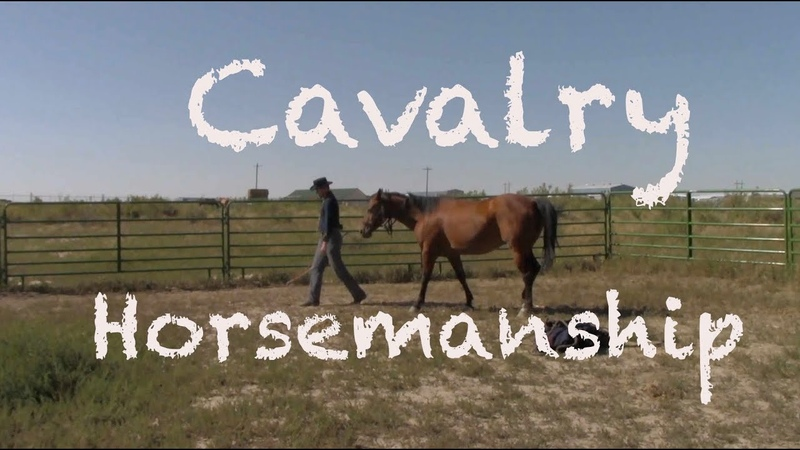 Civil War Cavalry: Develop the Relationship With Your Horse