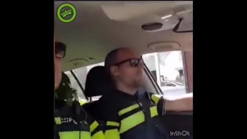 Рутина голландских копов
