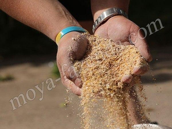 Измельчение зерна и початков кукурузы. Измельчитель с двигателем 2,5 кВт.