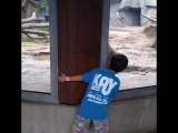 Zoo + people