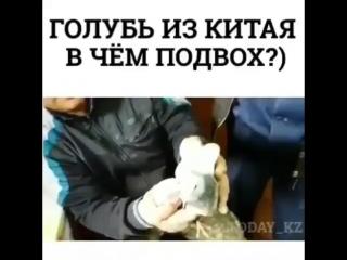 Рас па? 🤔