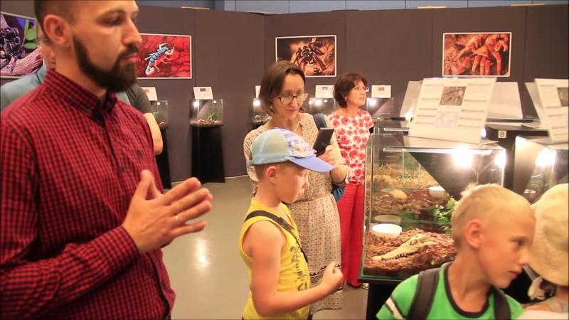 Открытие выставки Удивительный мир пауков