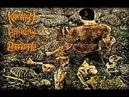 Kraanium, Epicardiectomy, Dormant Carnivore - Goresoaked Slamassacre (Split) (2010) (FULL)