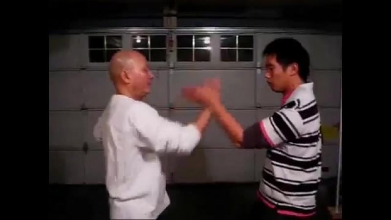 Wing Chun Kung Fu 詠春新選組 傳統練習本 少川靖男
