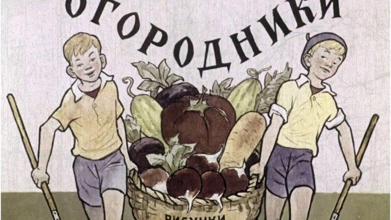 Огородники. Николай Носов. Озвученный диафильм