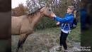 Грозовые ворота. Походы из Новороссийска