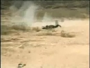 Израиль Сектор Газа Снайпер ЦАХАЛ застрелил журналиста