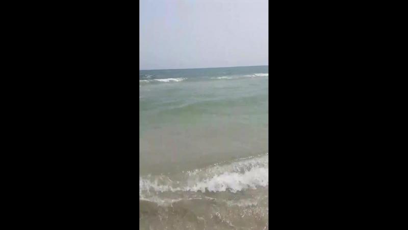 Видео-привет из Туниса от подписчицы ТЩ
