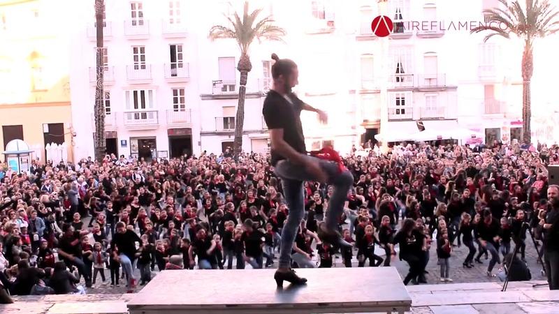 ¡CÁDIZ ES FLAMENCO! Eduardo Guerrero bailó con Cádiz ayer sábado 18 de noviembre en la Plaza de la C