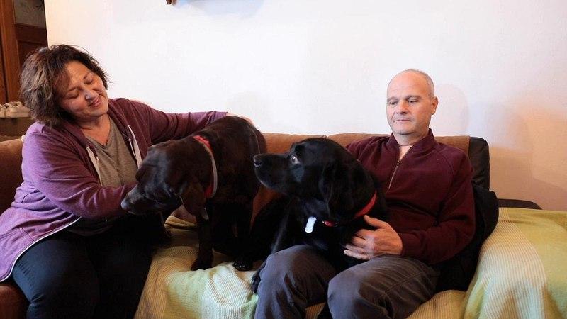Colpito da un malore, salvato dai suoi cani: Ecco cosa hanno fatto per me