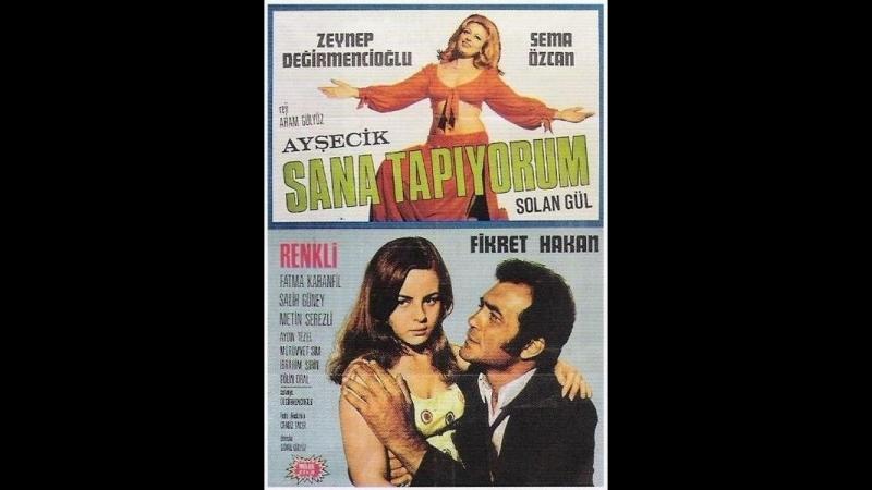 Ayşecik Sana Tapıyorum Solan Gül (1971) - Zeynep Değirmencioğlu _ Fikret Hakan