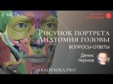 Рисунок портрета. Анатомия головы | Вопросы и Ответы | Денис Чернов ~ Akademika