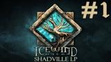 Icewind Dale Прохождение #1 Долина ледяного ветра
