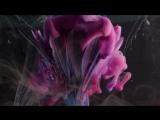 Эти парни рисуют чернилами в воде. Фанта... красиво  (720p)