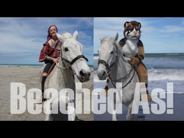 Beached As Horses Riding In Fursuit!