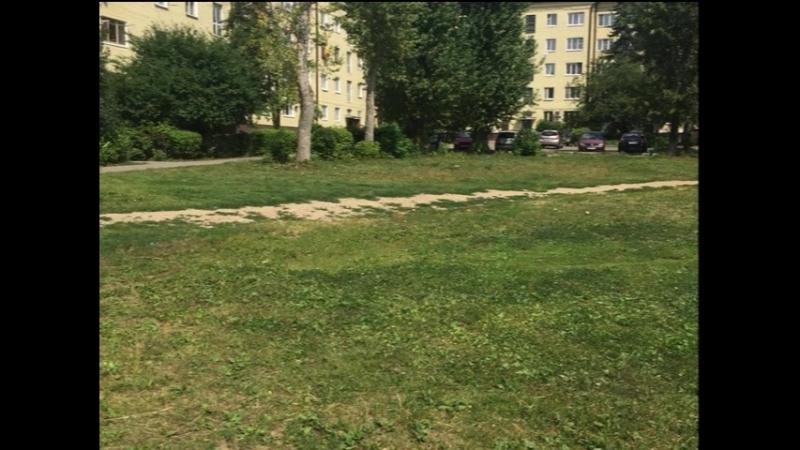 Проводится покос травы на улице Менделеева