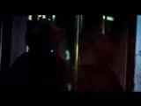 Teddybears Sthlm feat. Iggy Pop Punkrocker