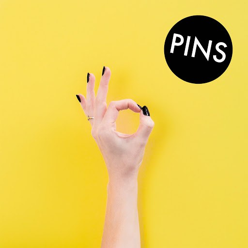PINS альбом Aggrophobe