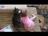 Малыш и котик