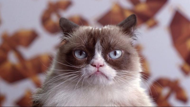Худшее Рождество Сердитой кошки (2014) HD 1080р