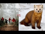 So Funny moments Animals Vs Funny Peoples Compilation