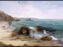 Пиратские приключения на необитаемом острове(Часть2)