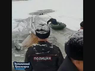 Спасение тонущей собаки