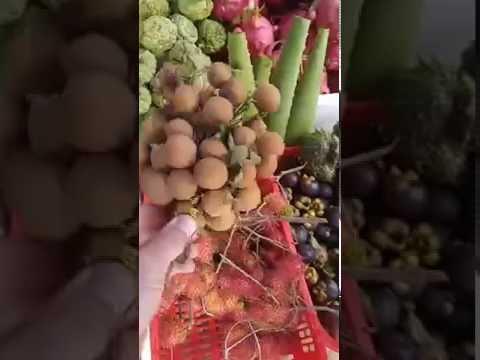 Вьетнам Невероятное Путишествие 2016 год