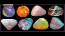 Камни особая форма жизни на Земле Живые камни